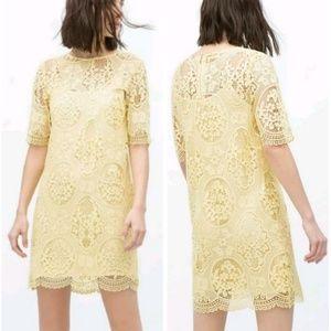 Zara NWT Sz_S Lace Floral Yellow Dress
